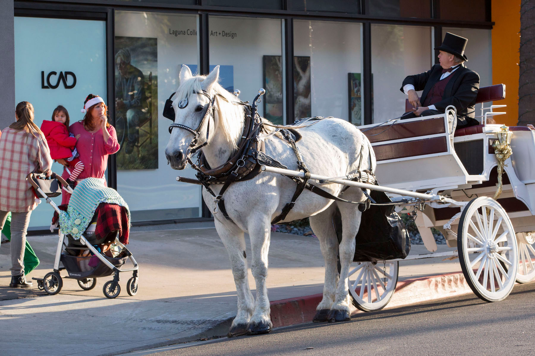 Holiday at horse carriage