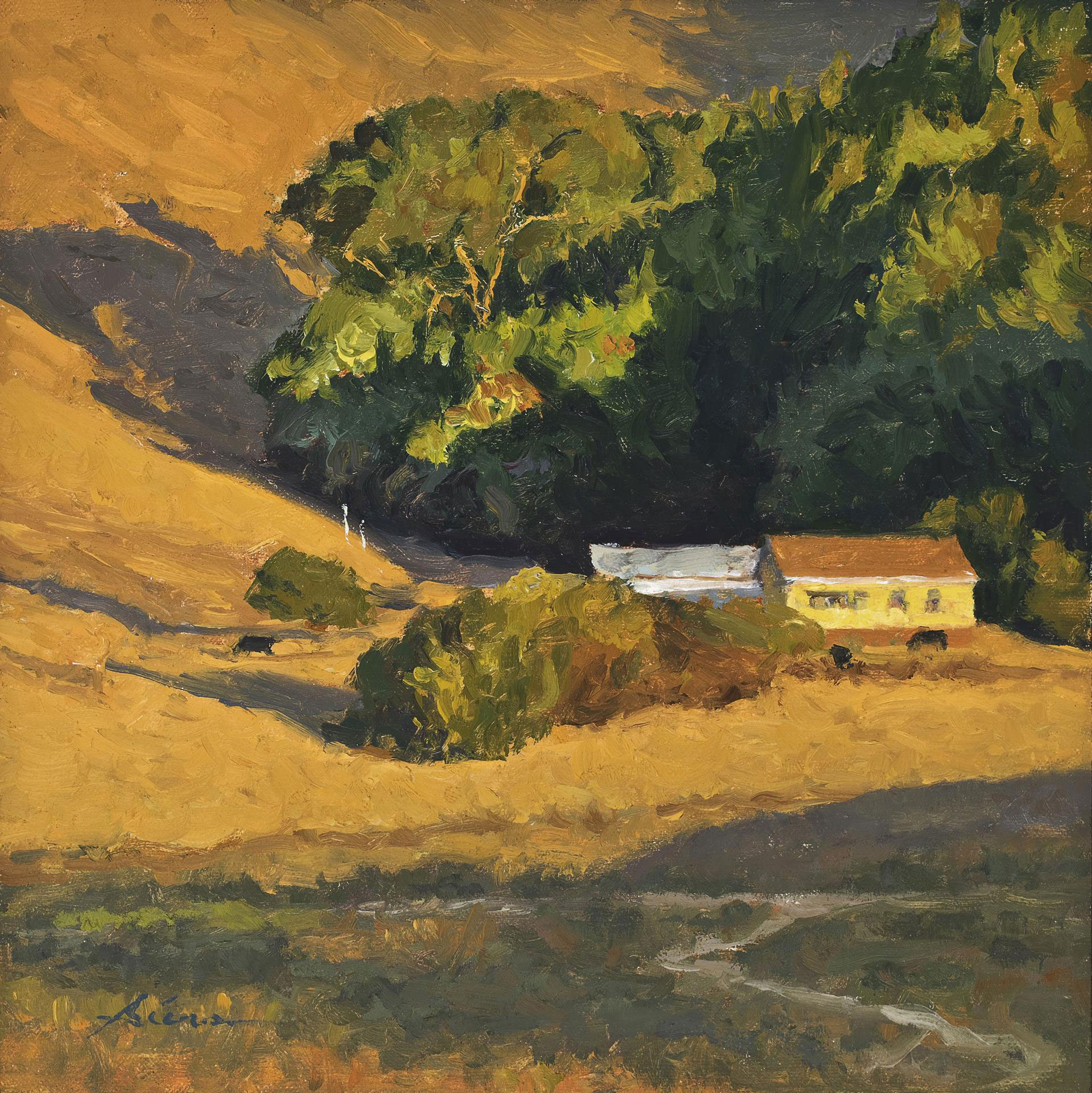 LPAPA honorable mention Golden hour
